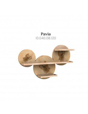 Shelf Pavia